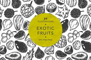 Exotic Fruits, Illustrations.