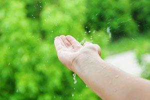 Female hands in the rain