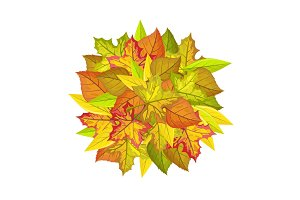 Autumn Leaves Vector Concept in Flat Design