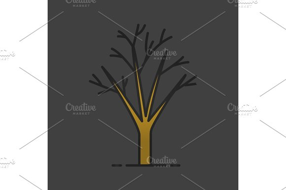 Tree Without Leaves Color Icon