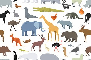 Pattern with different animals
