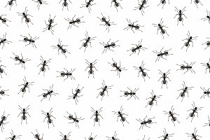 Seamless pattern ants