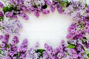 Floral frame with purple lilac