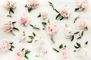 Floral pattern made of pink peonies