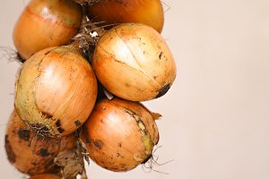 a bunch of onions