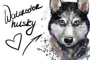 Digital watercolor cute husky