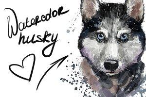 Digital watercolor cute husky