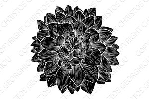Chrysanthemum or Dahlia Flower Retro Woodcut