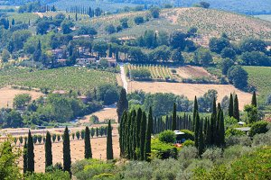 Tuscany countryside, Italy.