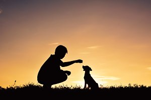 Silhouette boy with dog