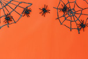 Decoration and items Halloween.