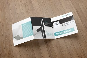 Trifold Business Brochure V753