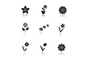 Flowers drop shadow black glyph icons set