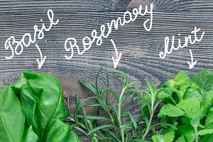 Basil, mint, rosemary herbs with lettering. Fresh green herbs laying on wooden background, flat lay, horizontal, copy space