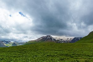 Glacier and snow mountain with green land landscape