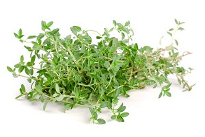 Bundle of fresh thyme spice isolated on white background