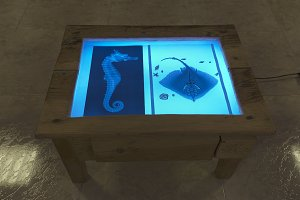 Light table in a living