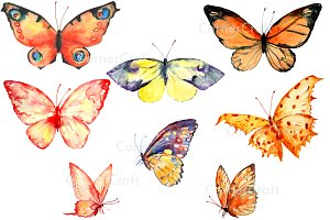 Watercolor Clipart Orange Butterfly