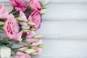 Fresh pink flowers frame on wooden background
