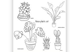 Houseplants vector set