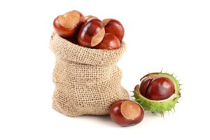 chestnut in a bag isolated on white background closeup