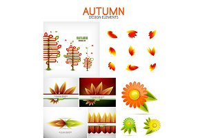 Vector orange and yellow autumn seasonal leaves, trees concepts