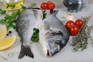 Fresh sea bream (Dorado)