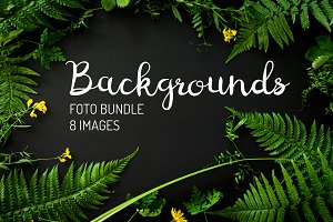 Forest plant background photo bundle