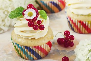 Gentle cupcake with cream and berries on a light background