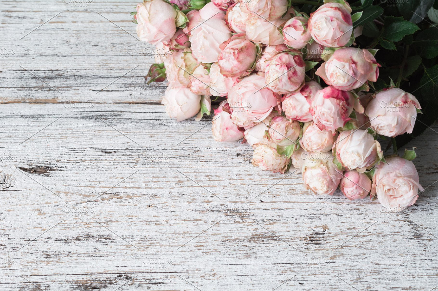Pink Shrub Roses On Vintage Wooden Background With Copy Space For Text