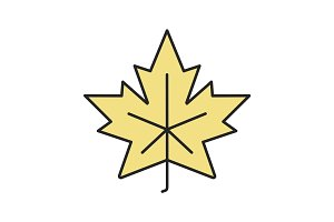 Maple leaf color icon