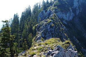 Rocky Mountain in Bavarian Alps
