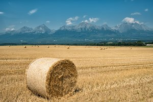 haystack against the background of mountains