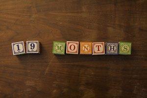 19 months in wooden blocks