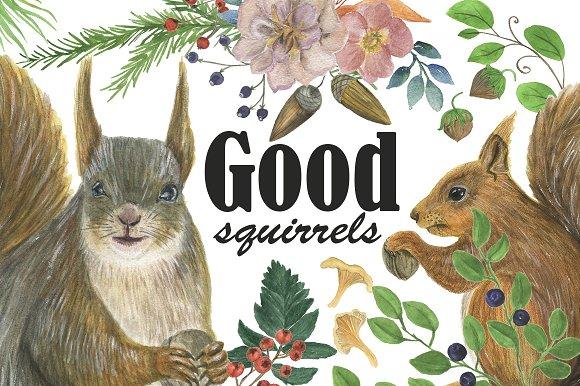 Good squirrels