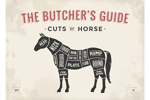 Cut of meat set. Poster Butcher diagram, scheme - Horse