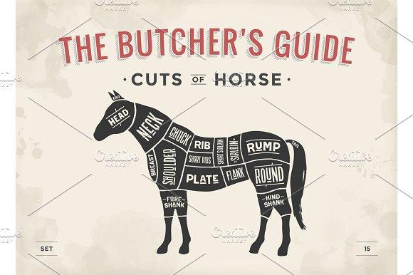 Cut of meat set. Poster Butcher diagram, scheme - Horse
