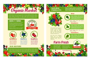 Fruit and berry organic market posters