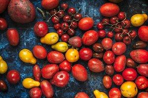 Different tomato harvest