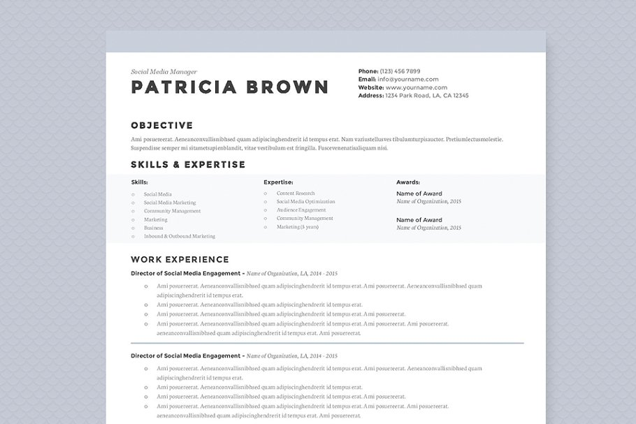 Clean Resume Template Pkg Resume Templates Creative Market