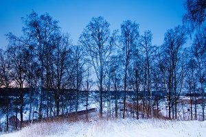 Winter seasonal landscape