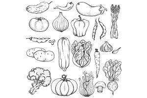 Big collection of vegetables