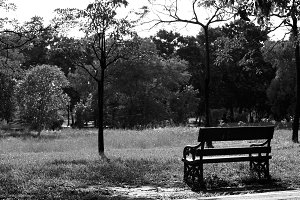 A bench in the park.