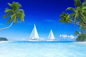 Yacht blue sky and palm tree