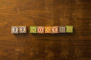 22 months in wooden blocks
