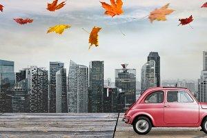 Autumn toy car