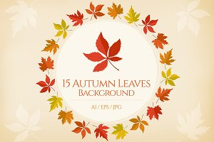 15 Autumn Leaves Background