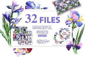 Irises PNG watercolor flowers set