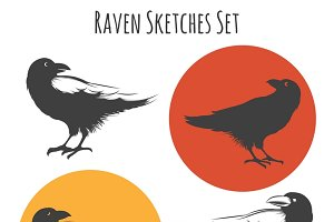 Raven sketches set