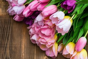 Close up of Bunch of Colorful Tulips on Wooden Background